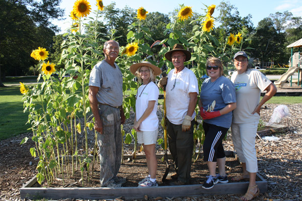 Knox Park Community Garden